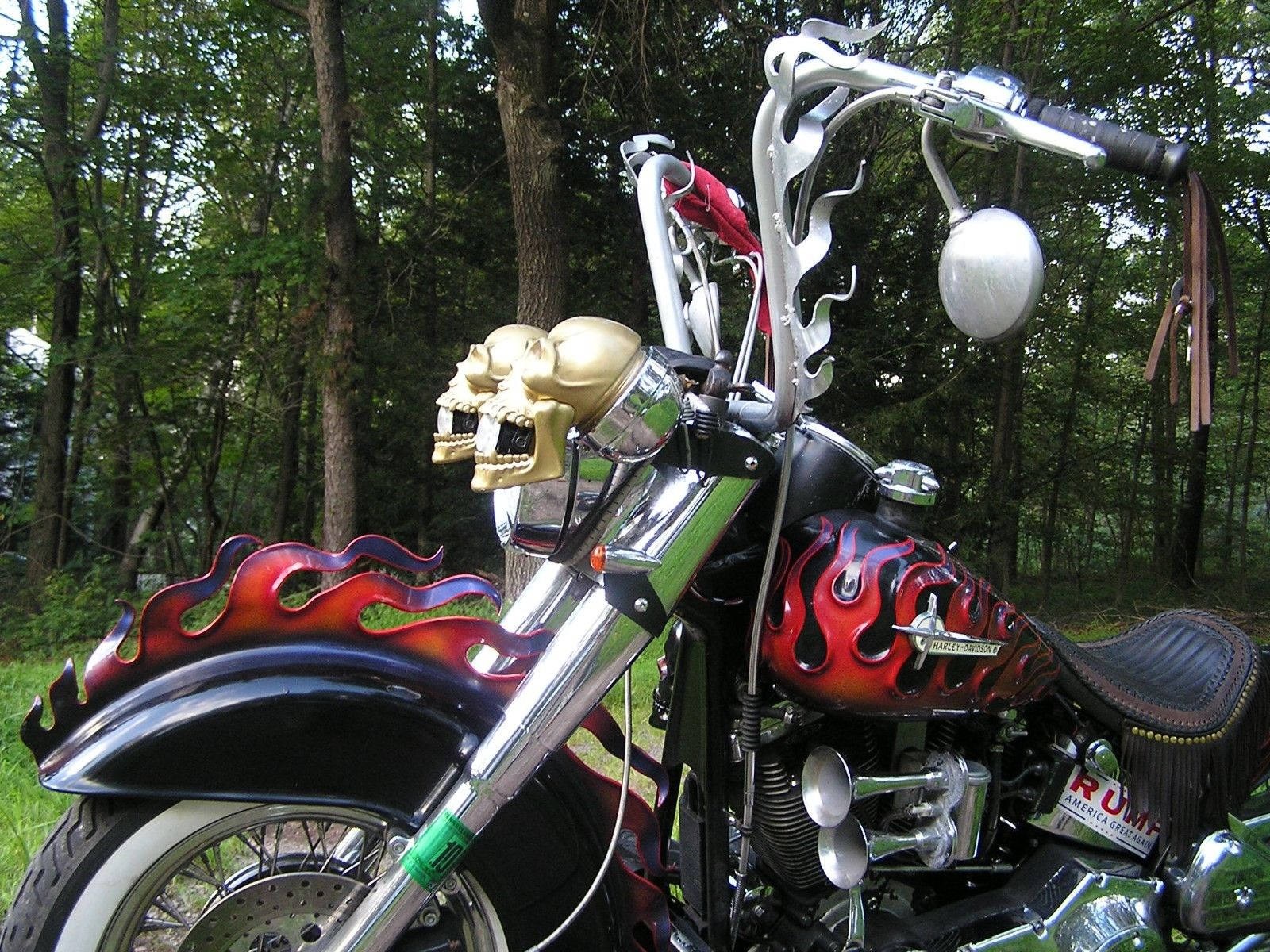 A Set of Gold Finger Skull Head/Side/Fog/Tail/Markers/Blinker Lights Does not apply