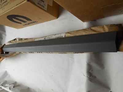 ? NEW OEM FACTORY MOPAR 01 LEFT SLIDING DOOR MOLDING RQ57VF7AA