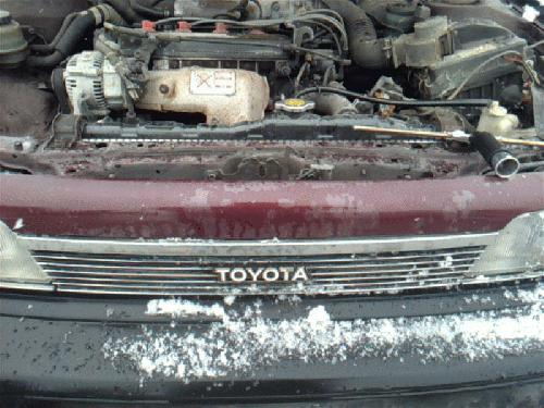 Toyota CAMRY 1990 Grille 104-58251 BHB321